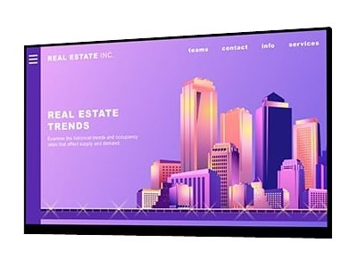Dell P2422H - Without stand - LED monitor - 24 (23.8 viewable) - 1920 x 1080 Full HD (1080p) @ 60 Hz - IPS - 250 cd/m?- 1000:1 - 5 ms - HDMI, VGA, DisplayPort